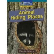 Windows on Literacy Fluent Plus (Science: Life Science): Animal Hiding Places by Monica Halpern