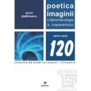 Poetica imaginii - Dorin Stefanescu