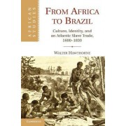 From Africa to Brazil by Walter Hawthorne