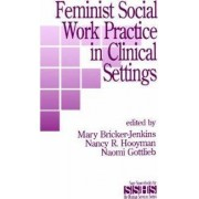 Feminist Social Work Practice in Clinical Settings by Mary Bricker-Jenkins