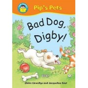 Bad Dog Digby! by Claire Llewellyn