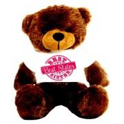 2 feet big brown teddy bear wearing special Best Sister T-shirt