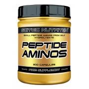 Peptid Aminos