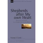 Shepherds After My Own Heart by Timothy S. Laniak