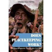 Does Peacekeeping Work? by Virginia Page Fortna
