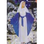 Costume Deguisement Adulte Noel Vierge Marie La Robe Avec Manteau Cape Et Ceinture Et Coiffe