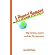 A Pivotal Moment by Laurie Ann Mazur
