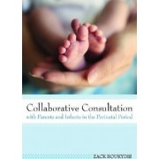Collaborative Consultation with Parents and Infants in the Perinatal Period by Zack Boukydis