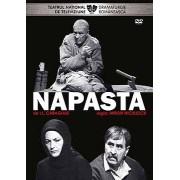 NAPASTA - NAPASTA