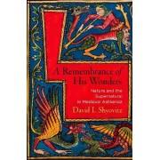 A Remembrance of His Wonders by David I. Shyovitz