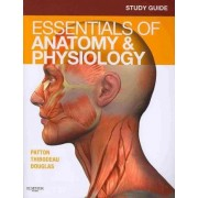 Study Guide for Essentials of Anatomy & Physiology by Andrew Case