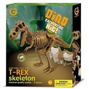 Geoworld Dino Excavation Kit - T-Rex Skeleton, Model: CL120K, Toys & Play by Kids & Play