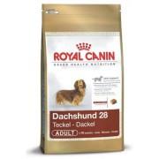 Royal Canin Razze Dachshund Adult (Bassotto) Sacco da 500 gr