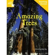 Fantastic Forest Yellow Level Non-Fiction by Catherine Baker