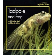 Stopwatch Big Book: Tadpole and Frog by Christine Back