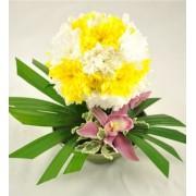Minge din crizanteme albe si galbene