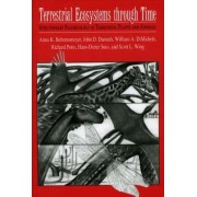 Terrestrial Ecosystems Through Time by Anna K. Behrensmeyer