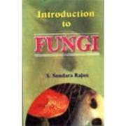 Introduction to Fungi by Sundara S. Rajan