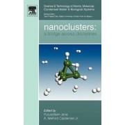 Nanoclusters: Volume 1 by Purusottam Jena