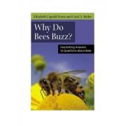 Why Do Bees Buzz? by Elizabeth Capaldi Evans