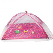 Lovely Baby Play Gym with net (Multicolor)
