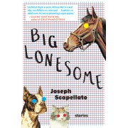 Big Lonesome
