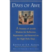 Days of Awe by S. Y. Agnon