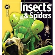 Insects & Spiders by Noel Tait