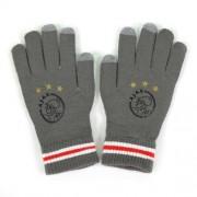 Handschoenen Ajax Senior Logo Grijs