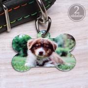 Egyedi fényképes kutyabiléta
