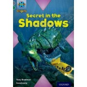 Project X Origins: Grey Book Band, Oxford Level 12: Myths and Legends: Secret in the Shadows by Tony Bradman