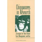 Chimpanzees in Research by Committee on Long-Term Care of Chimpanzees