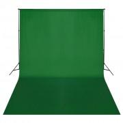 vidaXL Фонова система, зелен фон, 500 х 300 см.