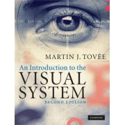 An Introduction to the Visual System by Martin J. Tovee
