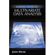 Making Sense of Multivariate Data Analysis by John Spicer