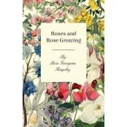 Roses And Rose Growing by Rose Georgina Kingsley