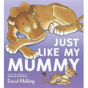 Just Like My Mummy by David Melling