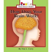 How Does Your Brain Work? by Don L. Curry