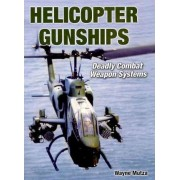 American Helicopter Gunships by Wayne Mutza