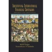 Identifying International Financial Contagion by Mardi Dungey