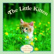 The Little Kitten by Judy Dunn
