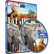 Discovery - La extreme-Namibia/Borneo/Australia (DVD)