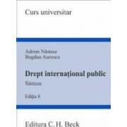 Drept international public. Sinteze - Adrian Nastase Bogdan Aurescu