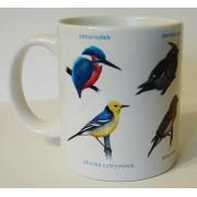 Kubek ornitologiczny (kolorowe ptaki)