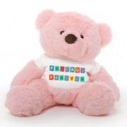 Pink 2 feet Fur Face Big Teddy Bear wearing a Friends Forever T-shirt
