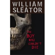 The Boy Who Couldn't Die by William Sleator