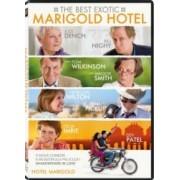 BEST EXOTIC MARIGOLD HOTEL DVD 2011