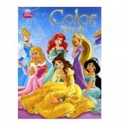 Disney kleurboek prinsessen