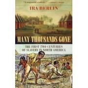 Many Thousands Gone by Ira Berlin