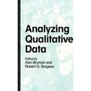 Analyzing Qualitative Data by Prof. Alan Bryman